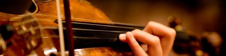 violino banner 800x200